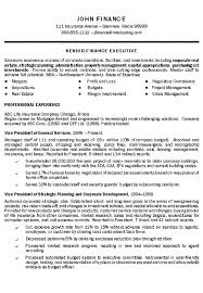 executive resume template format by finance top resume