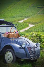 29 best car picnic images on pinterest car country living and