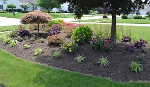 Evergreen Landscaping Ideas 23 Landscaping Ideas With Photos