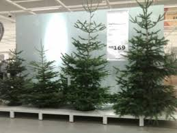 ikea actually sells real christmas trees