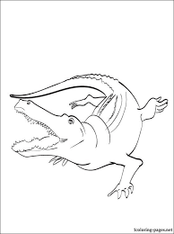 alligator coloring coloring pages