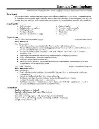 resume for sales and marketing example of resume for sales position examples of resumes