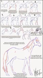 seriously horsing around fun graphic on how to draw a horse