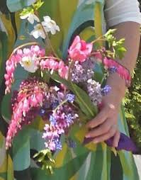 Bleeding Hearts Flowers Spring Bouquet With Dicentra Spectabilis And Myosotis In Vase