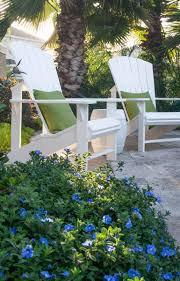 Florida Garden Ideas Jan S Winter Escape Garden In Florida Finegardening