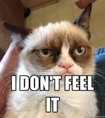 I Feel It Meme - i don t feel it cat meme cat planet cat planet