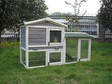 Guinea Pig Hutches And Runs For Sale Guinea Pig Hutch And Run Ebay