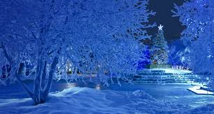 snowy christmas pictures snowy christmas pin xmas