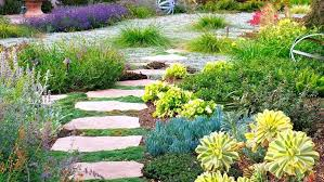 water gardening magazine idea to invite meandering garden