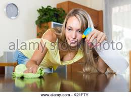 Cleaning Table Stock Images Royalty by Happy Long Haired Housewife Cleaning Table Stock Photo Royalty