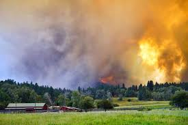 Fire Evacuations Nz by Updated Structures Destroyed Hundreds Evacuated As Hamilton Fire