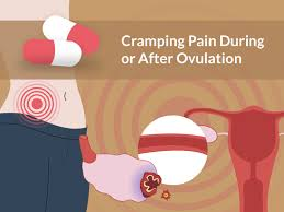 light cring early pregnancy cring pain during or after ovulation are you pregnant