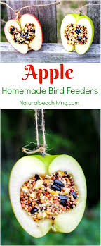 how to make apple birdseed bird feeders everyone