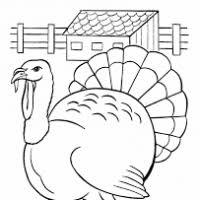 thanksgiving clip outlines page 5 divascuisine