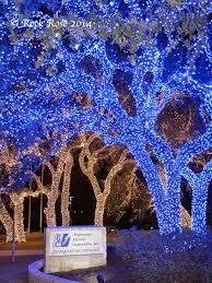 retama park christmas lights rock rose an outing to see the christmas lights