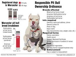 american pitbull terrier info no charges against man who stabbed pit bull to death news