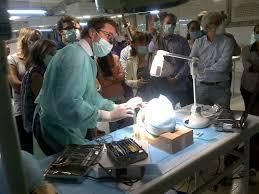 guided bone regeneration innovation and excellence in the new u0027guided bone regeneration