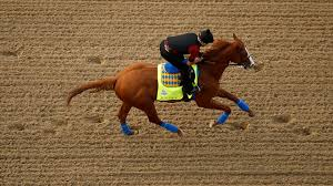 how far can a horse travel in a day images 2018 kentucky derby betting on justify can still bring home money jpg