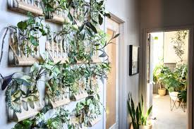 floor plant a baltimore loft filled floor to ceiling with plants front main