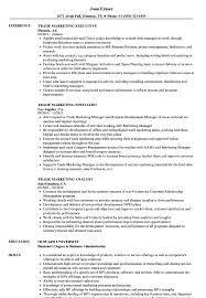 sle resume for business analysts duties of executor of trust trade marketing resume sles velvet jobs