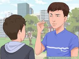 early young male pubic hair growth pictures simple ways to tell if you have hit puberty boys wikihow