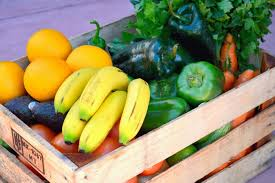 fruit delivery service fruit at your door produce delivery service in harlingen