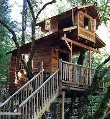 tree house designs ipbworks com