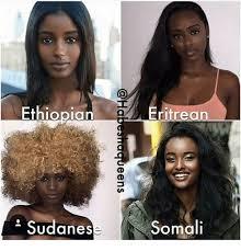 Somali Memes - ethiopian ethiopian frifrean eritrean sudanes somali meme on