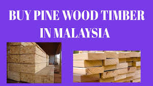 Hobby Wood Suppliers Buy Pine Wood Timber In Malaysia Pilihan Alam Supplier In