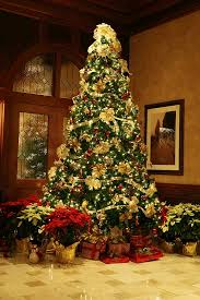 Professional Christmas Tree Decorators Randy U0027s Holiday Lighting