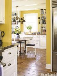 how to paint kitchen cabinets a burst of beautiful the best interior yellows traditional kitchen countertops and