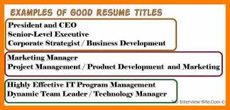cv title examples 6 resume title examples prefix chart