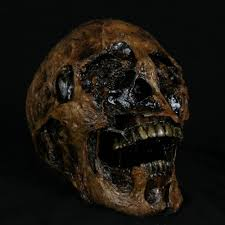 corpsed human skull extreme realism and detail halloween