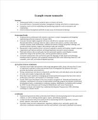 Executive Summary Example For Resume by Resume Summary Example Resume Sample