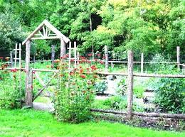 backyard vegetable garden design ideas 450x301 backyard vegetable
