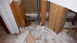 Laminate Flooring Flood Damage How Do You Know If Everything Is Dry Water Damage Repair