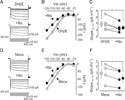 nicotine blocks the hyperpolarization activated current ih and