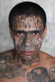 what is the ms 13 gang what does the name mara salvatrucha mean