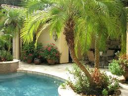Tropical Backyard Ideas Backyard Pool Landscape Designs Best Tropical Pool Landscaping