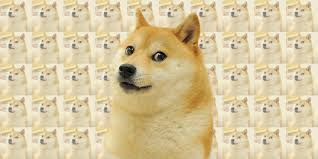 Doge Meme Images - the doge meme is back and this time it s liquified