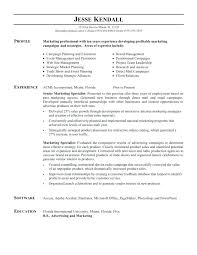 sales manager resume template sales resume templates sales resume sle experience resumes