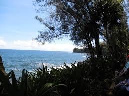 Kona Botanical Gardens Rocks Cove Seymore Botanical Gardens Kona Hawaii