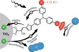 Light Independent Reactions Definition Spectroscopic Detection Of Halogen Bonding Resolves Dye