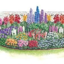 best 25 perennial garden plans ideas on pinterest flowerbed
