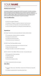 Resume Personal Profile Statement Examples Personal Statement For Resume Example Resume Personal Statement