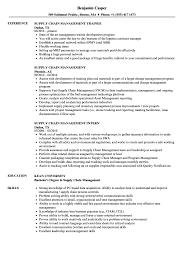 business management resume exles supply chain management resume sles velvet