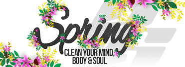 spring clean blog why does spring cleaning make us feel so good
