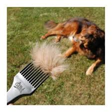 belgian shepherd dog rescue a coathook pet comb to benefit the american belgian malinois