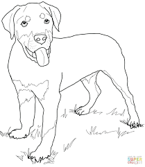 beagle coloring pages free realistic dog printable kids easter
