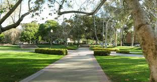 Chp Scale Locations University Of California Los Angeles Niche